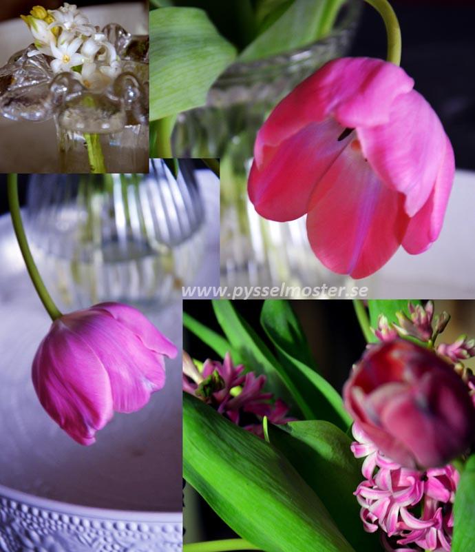 collage_1_12_72p